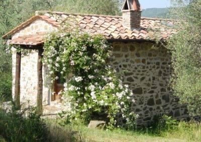 17. Casa Olivi