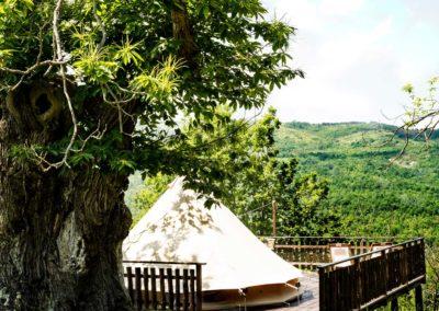 Tent-Deck-Valley